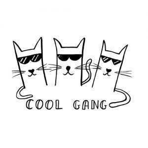 Cool gang