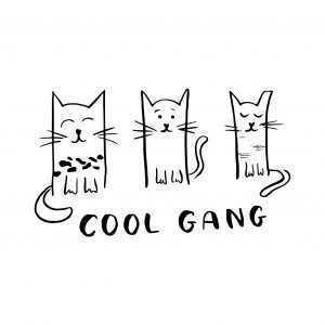Kociara – Cool Gang